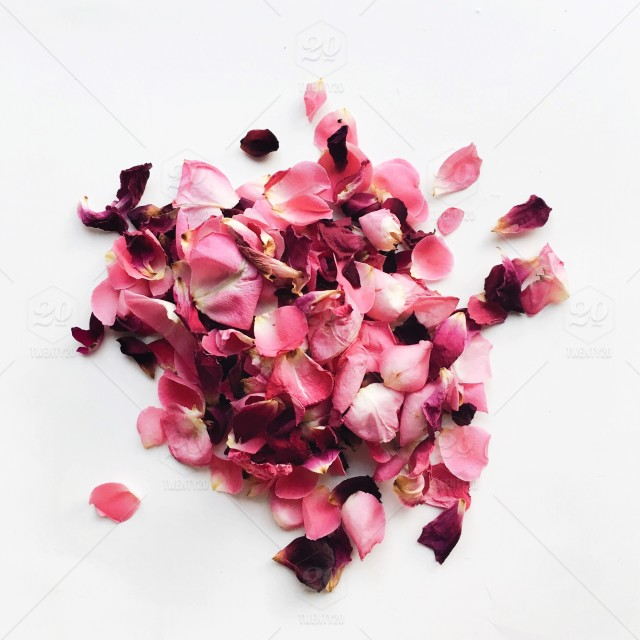 Centered Pile Of Vibrant Pink And Purple Rose Flower Petals On A White Background
