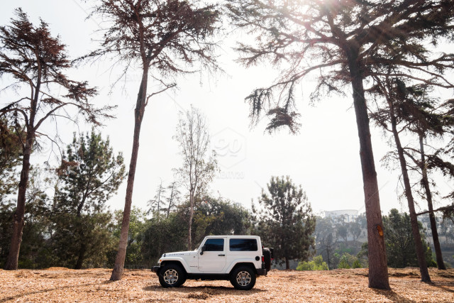 San Diego Jeep >> Jeep Adventure At Balboa Park In San Diego Ca Stock Photo