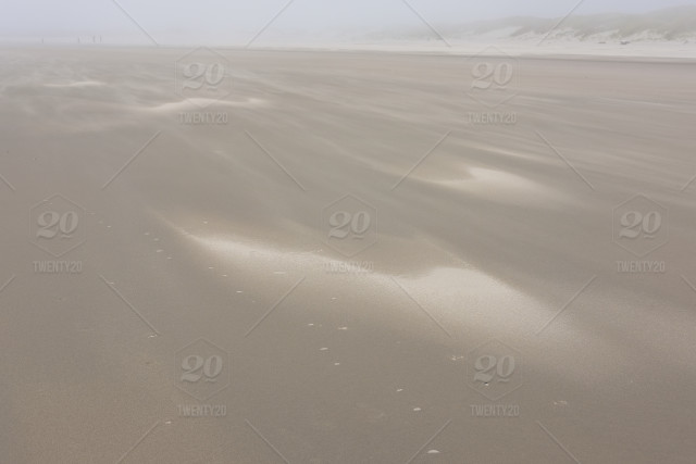 Sand patterns draw out on a wide open beach  Wild and free