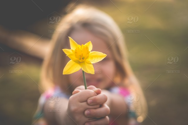 Nature flower childhood child spring flowers children kids stock photo nature flower childhood child spring flowers children mightylinksfo Choice Image