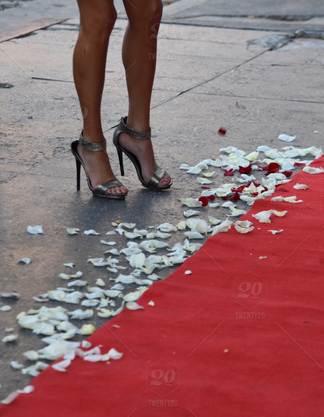 Red Carpet Rose Petals Stilettos And Great Legs Stock Photo