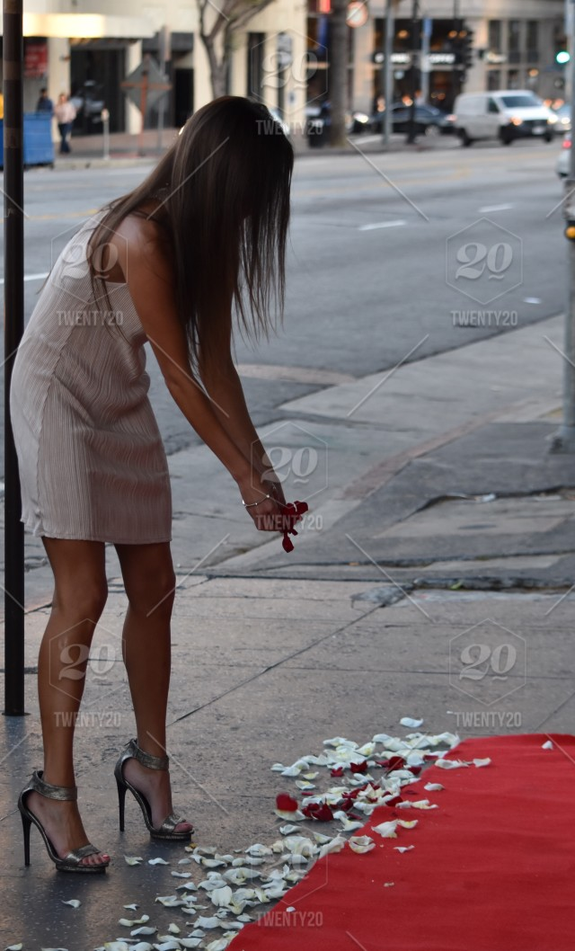 Beautiful Young Millennial Woman Spreading Rose Petals On A Red