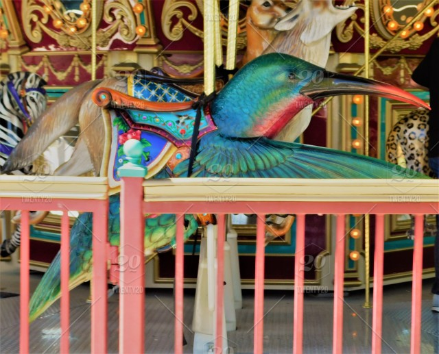 Summer Lifestyle - Brightly Colored Carousel Animals for Children to