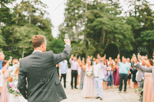 stock photo, outdoors, beach, toast, crowd, wedding, group, together, cheers, speech