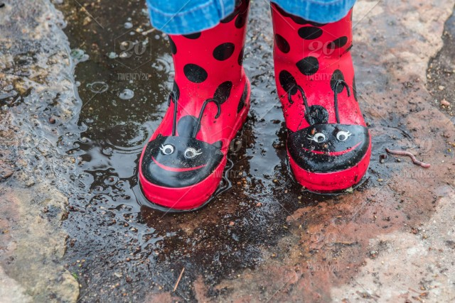 f58f94648d5 Child in red ladybug rain boots standing in a puddle ( feet only) stock ...