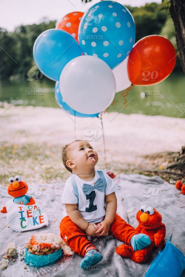 Baby Boy Elmo Cookie Monster 1st Birthday Cake Smash Stock Photo