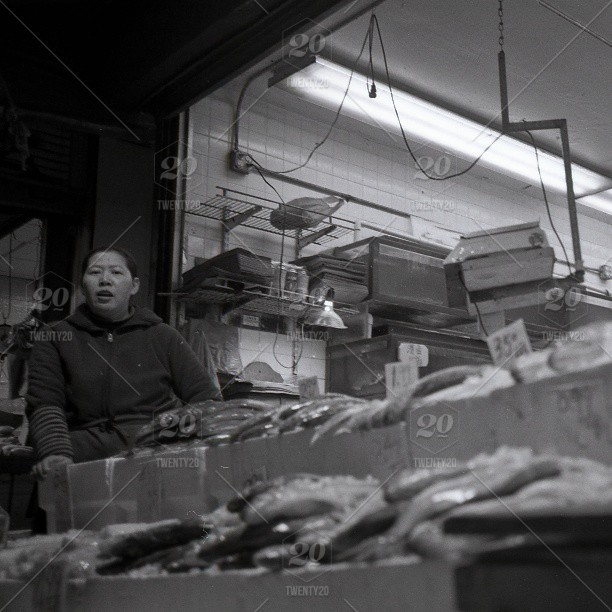 Night fish store  Leica mini3 Kodak tx400 stock photo ig