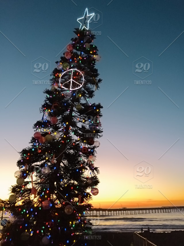 San Diego California Beach Christmas Tree With Lights Peace Sign Star And Beach Themed Ornaments During The Sunset Stock Photo D63b163a 6949 4f7c 86a5 Cd0562ec573c