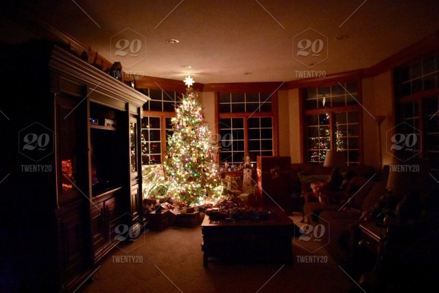 Christmas Tree In Dark Living Room Stock Photo 0608ce07 B225 4df6