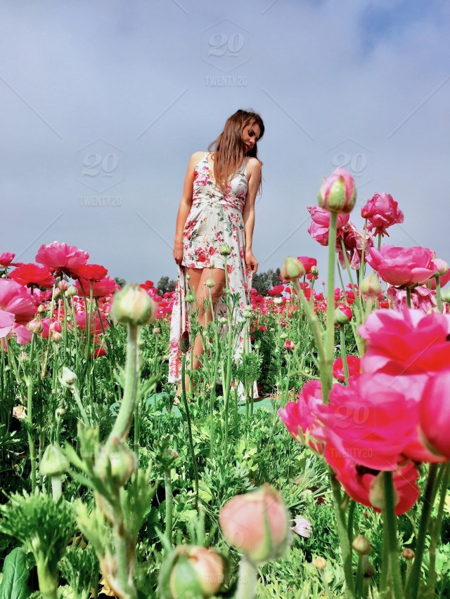 Girl Standing In The Beautiful Flowers In Springtime San Diego
