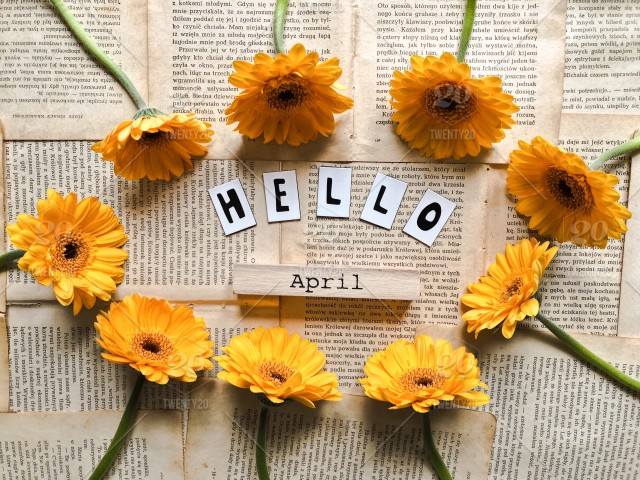 stock-photo-flower-yellow-lifestyle-flowers-word-words-flat-hello-yellow-flower-8e5f59ad-b5f5-4224-85cb-41169a78ec6d.jpg