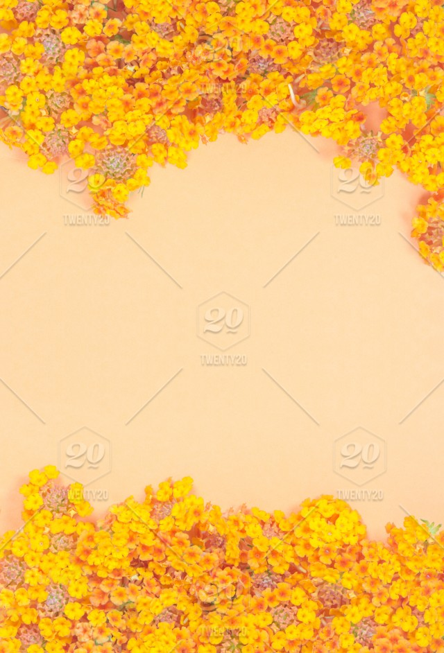 Frame of greeting card with yellow flowers pattern in vintage pastel frame of greeting card with yellow flowers pattern in vintage pastel color tone on orange background with copy space beautiful texture background of yellow mightylinksfo