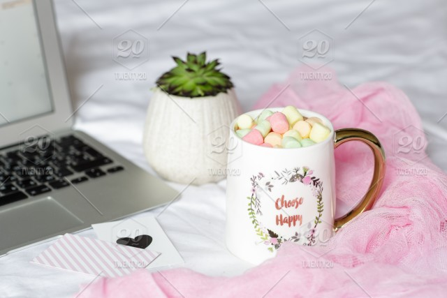 stock photo, pink, plant, morning, coffee-cup, cup, succulent, laptop, quotes, marshmallow, words-and-phrases