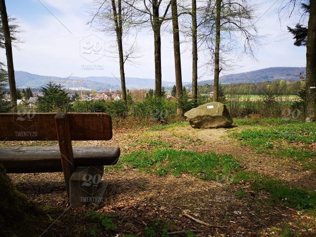 View from a massive bench on the stone block in the forest
