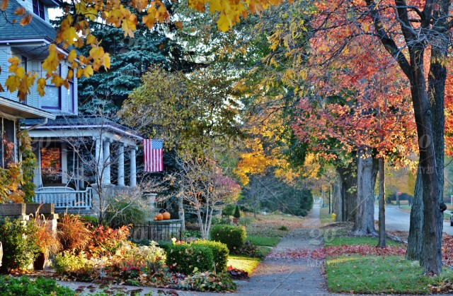 Tiny House Town Beautiful Seattle Tiny House: Beautiful Fall Day In The City!! 🍁 Nominated Stock Photo