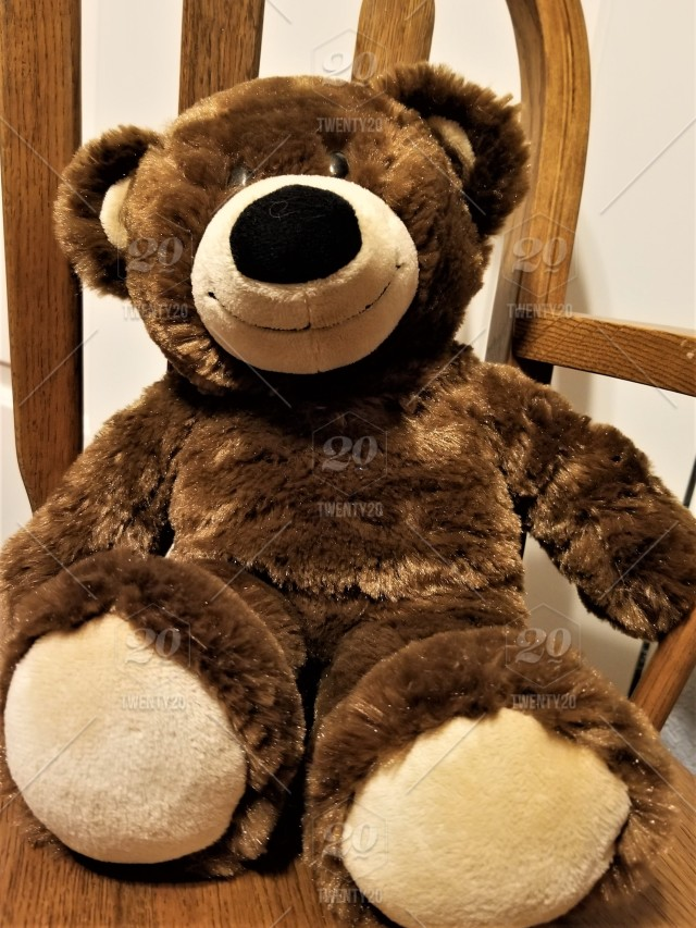 National Bring Your Teddy Bear to Work or School Day is the