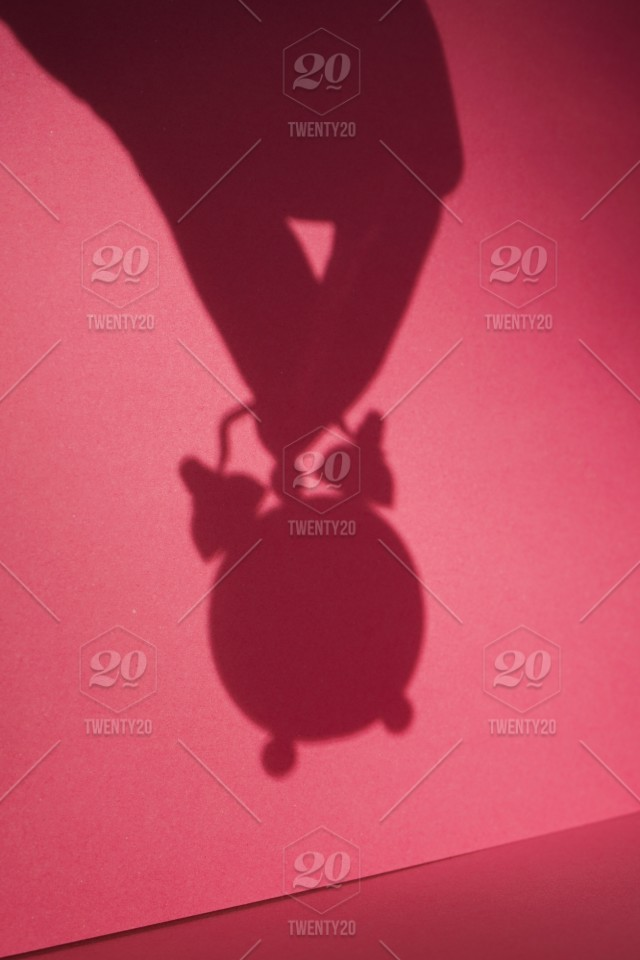 Clock, Time, Women, Manager, Working, Personal Organizer, Hourglass