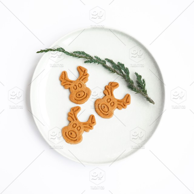 Christmas Cookie Gingerbread Reindeer On A White Background Absolute