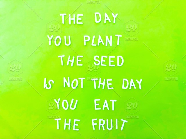 The Day You Plant The Seed Is Not The Day You Eat The Fruit