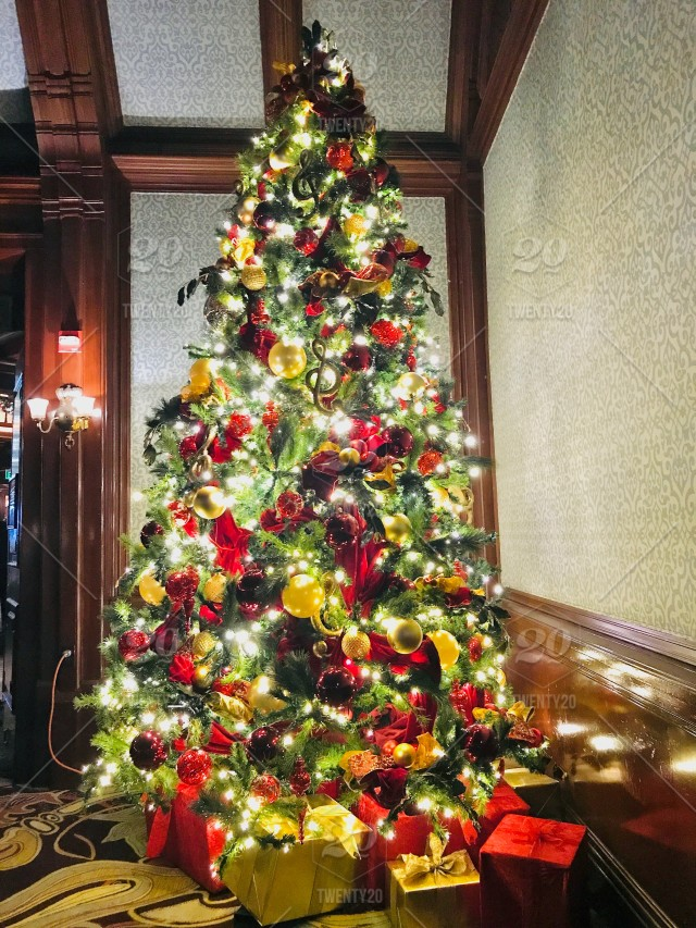 Old Fashioned Christmas Tree Decorations.A Bright And Beautiful Old Fashioned Classic Christmas Tree