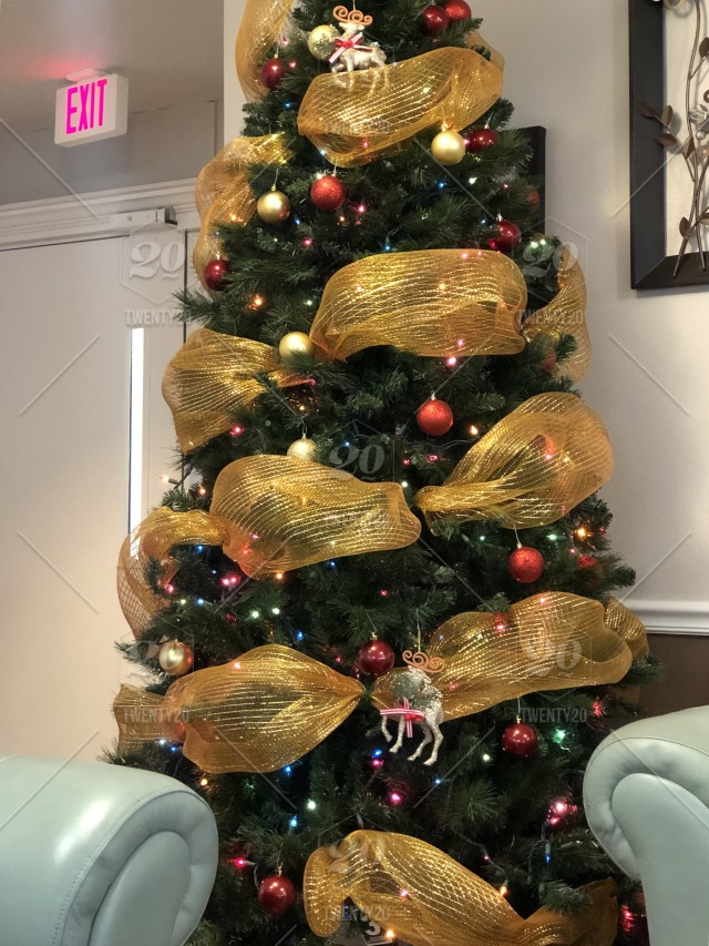 Christmas tree with gold ribbon trim