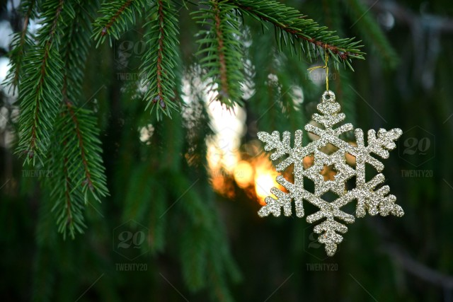 A gold glitter Christmas star or snowflake hanging in an