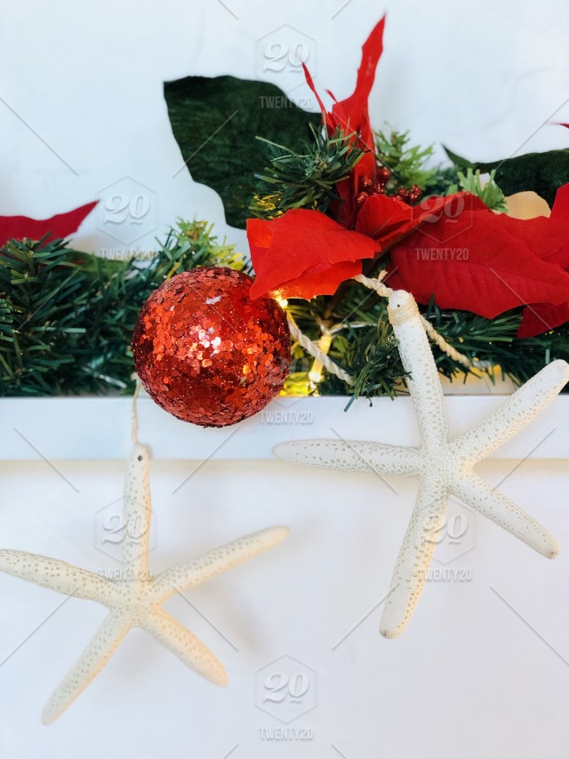 Red, Christmas season, decorated mantle with red poinsettias, red Christmas ball, and two starfish. 🌟 NOMINATED 🌟 stock photo 418e86c7-1f02-444c-b54d- ...