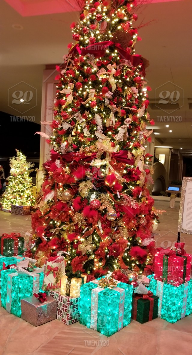 Colorful Christmas Tree Images.Colorful Christmas Tree A Beautifully Decorated Christmas