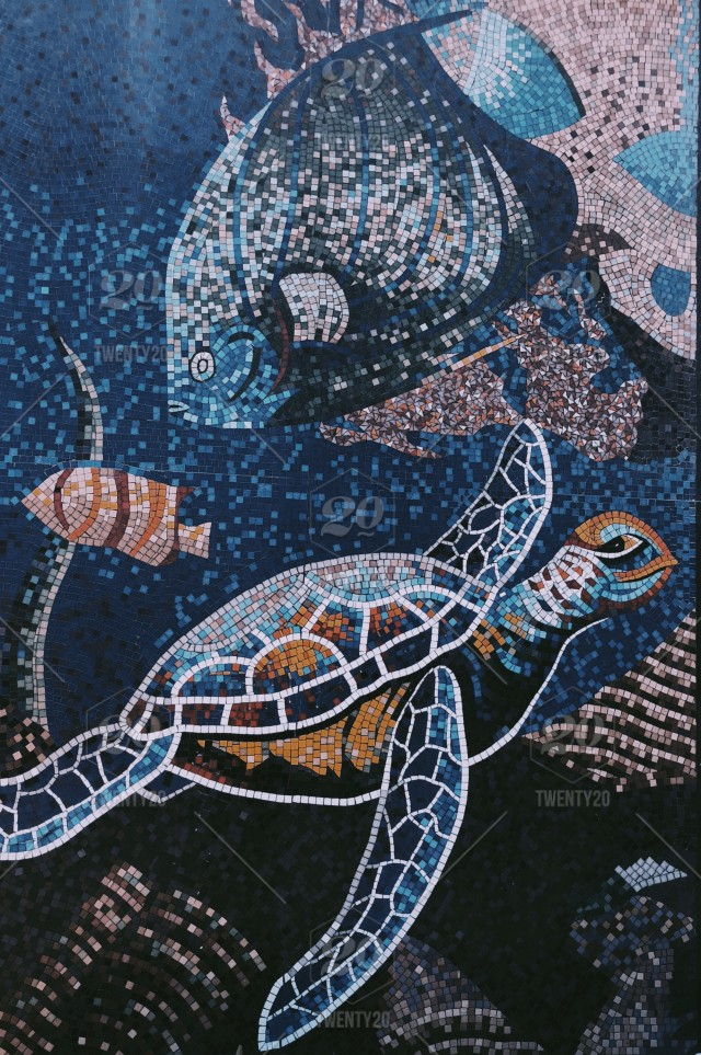 Turtle Mosaic Blue Aesthetic Wallpaper Background Pretty