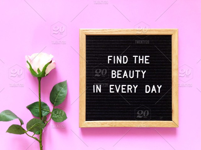 Find The Beauty In Every Day Pinkish Rose Beauty Beautiful