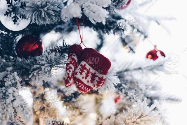 Mini red mittens Christmas decorations on a snowy Christmas tree 💲 ✨NOMINATED✨ stock photo f3e5b072-f5c9-442a-be02-d0b9bd52e4b7