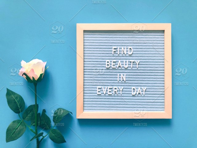 find beauty in every day beauty beautiful rose letter board