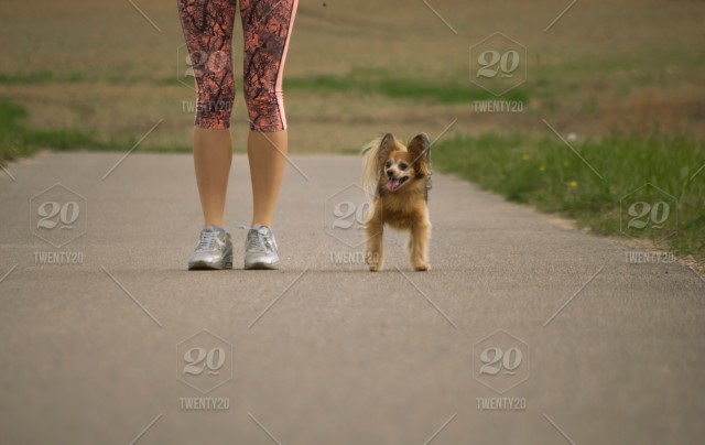 Little funny and cute dog standing next to the feet of his mistress
