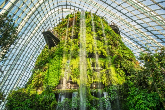 Gardens By The Bay  Grant Associates And Wilkinson Eyre Architects