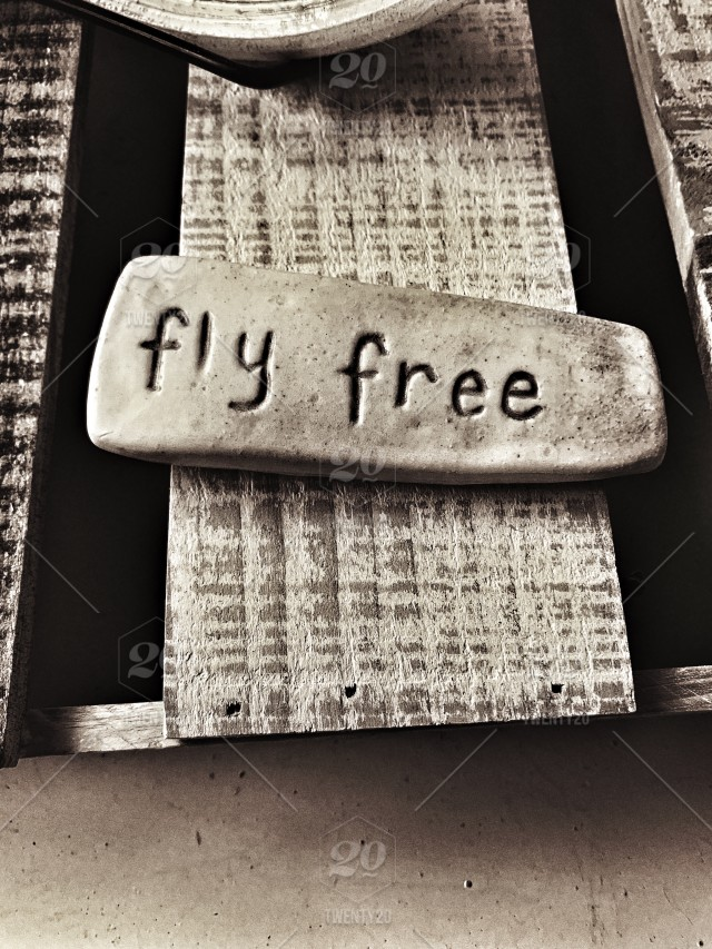 Fly Free Motivation Words Inspiration Quotes Words On Stone Morning Quote In Black And White Photography Stock Photo 1e18780f 4b61 467d 8a28 D2294b899d58