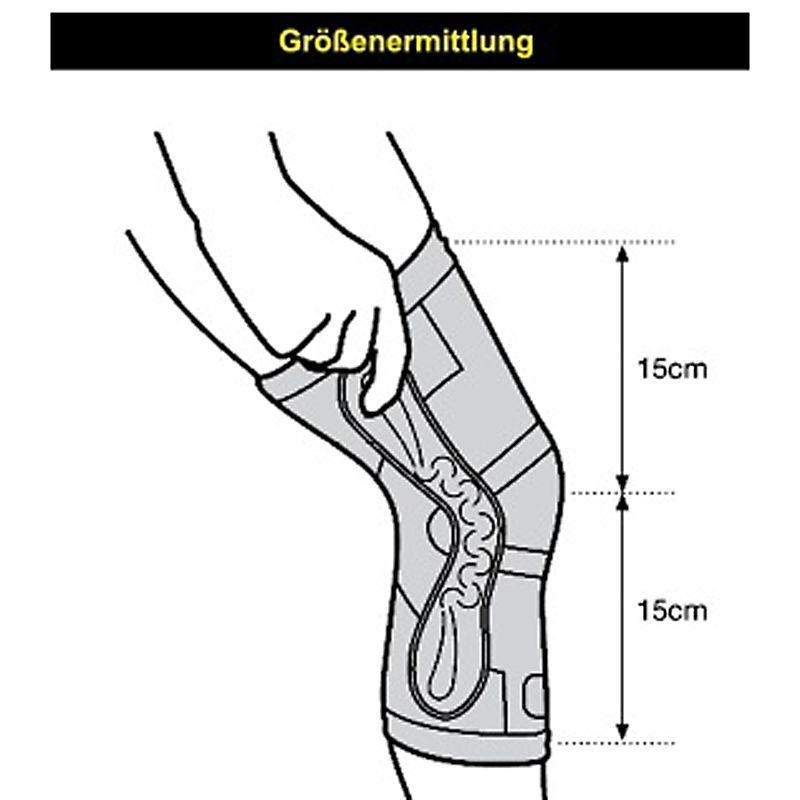 Beste Kniemuskulatur Diagramm Fotos - Menschliche Anatomie Bilder ...