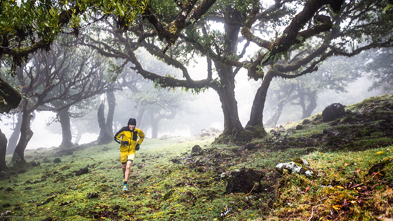 Trailrunner läuft in gelbschwarzer GORE RUNNING WEAR Laufbekleidung durch einen nebligen Wald