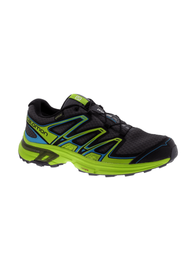 Salomon Wings Flyte GTX Herren
