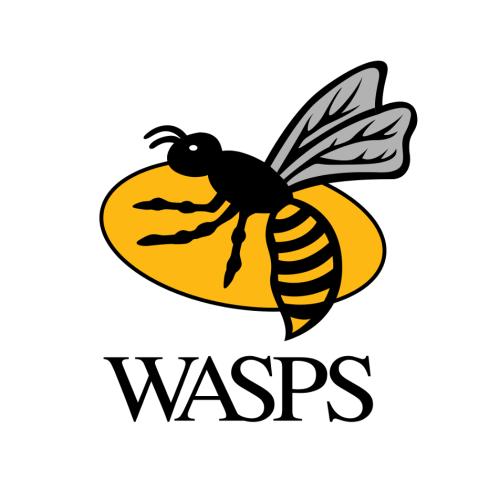 Wasps logo