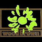 Woodbrown logo