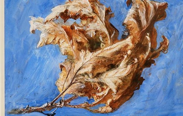 John Ruskin, Study of Spray of Dead Oak Leaves 1879