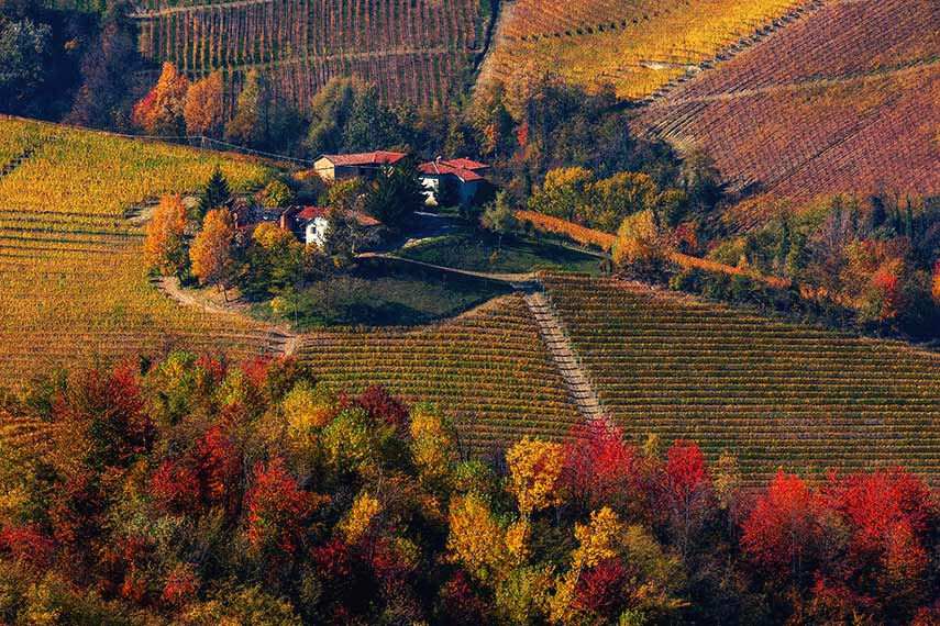 Ariel view of rural houses on the hill among colourful autumnal vineyards and trees in Piedmont, northern Italy