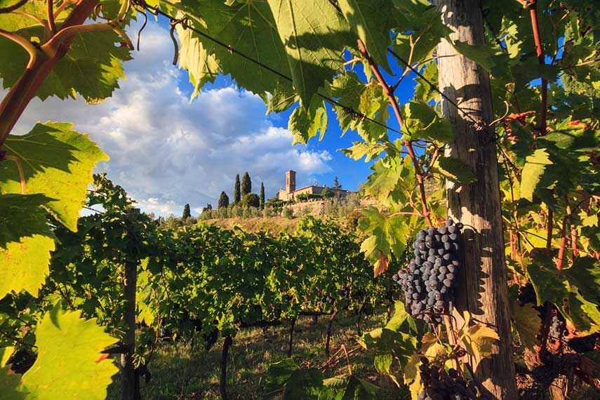 Beautiful Chianti, home to some of Italy's most iconic wines
