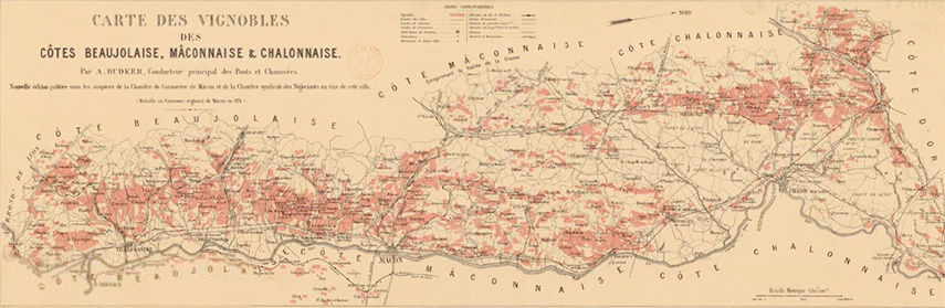 1869 Classification of Beaujolais Wine Regions