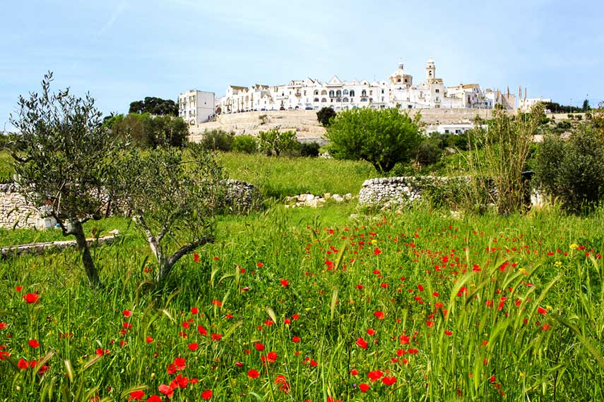 The pretty town of Locorotondo in Puglia