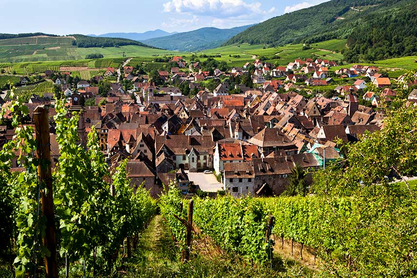 With its sunny weather, rolling hills and quaint Medieval villages, Alsace is a wine lovers dream