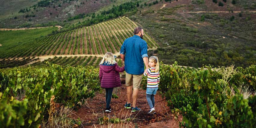 Walking through the vineyards at Thorne and Daughters in the Western Cape, South Africa