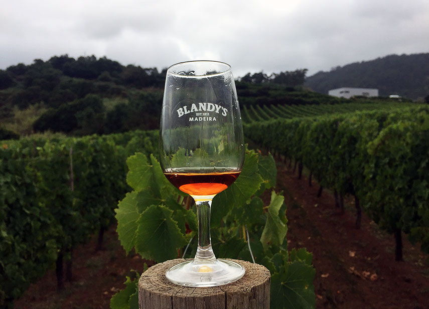 We were delightfully hosted by Blandy's, the largest and most influential Madeira wine company, whose future looks as bright as its past is rich