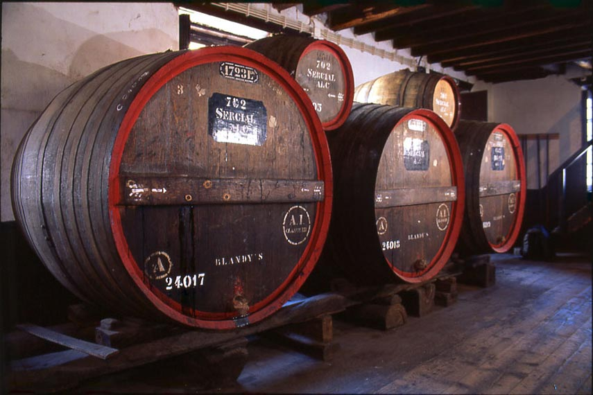 Casks ageing under the roof in barrels in the traditional way