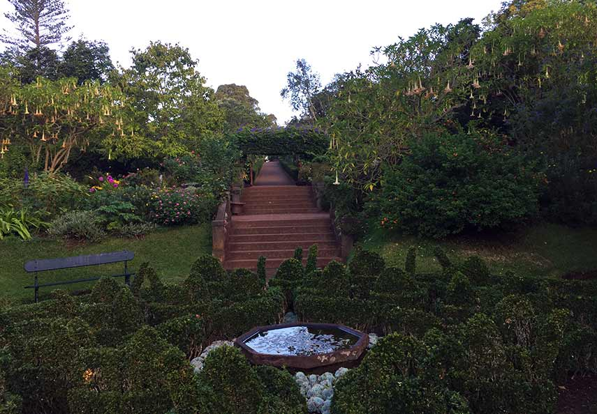 We were hosted by the Blandys at their beautiful Palheiro estate where the gardens are something to behold